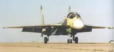 Sukhoi su-33.KUB Embarcado.a