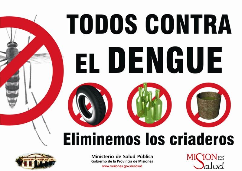 Dengue Mosquito Puerto Rico
