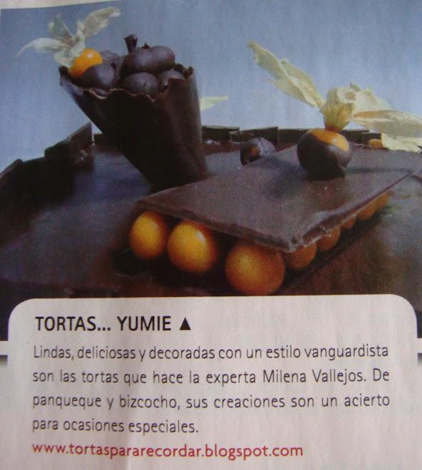 Dato del Buscador,  Revista Mas decoración . Diario La tercera.31 de mayo 2008