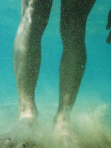 Bree Wee Run ' Swim. Sand Sun