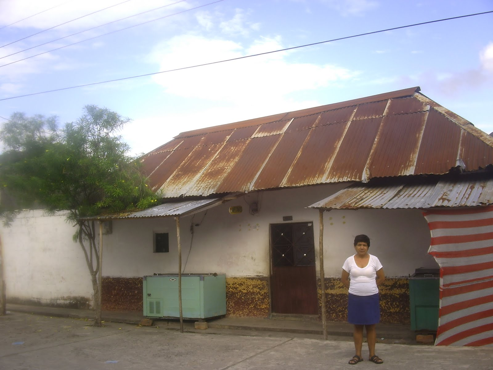 Escritores futuro 3000 i e d puerto bogota guaduas casas for Colores de techos de casas