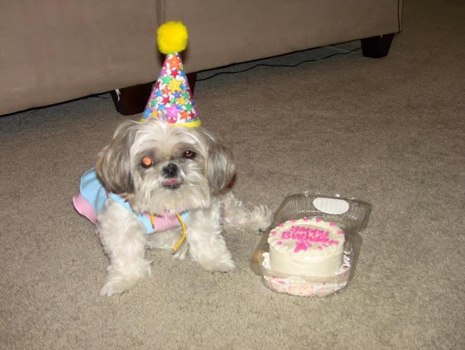 Twiggy turns 12