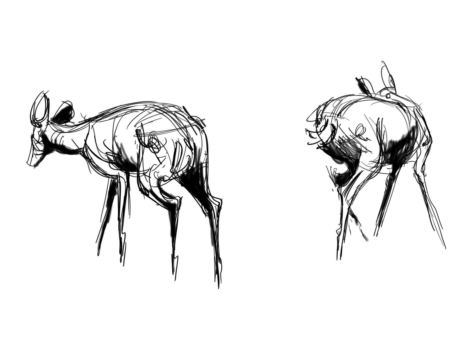 Line Drawing Deer : Teeth drawing black and white tooth line