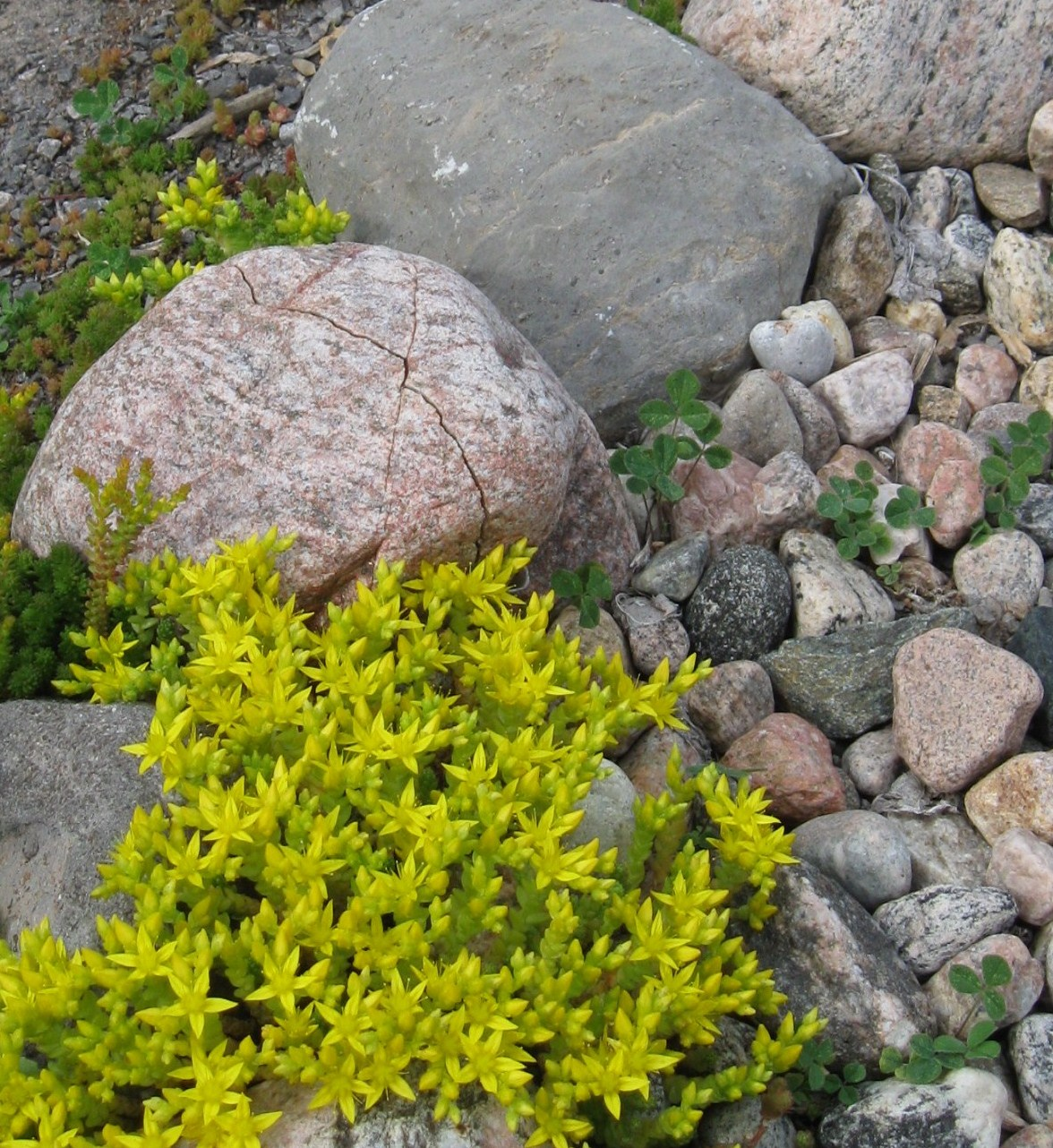Garden dream rock your landscape for What are river stones