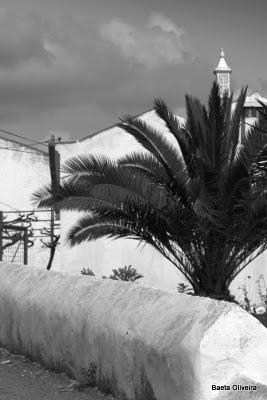 Cumeada-Cortes, Silves, Março 2010