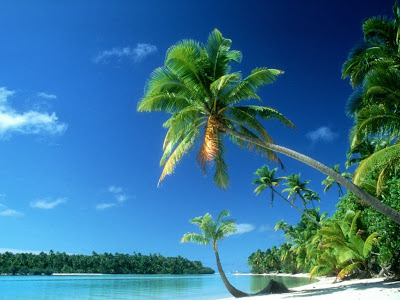tropical wallpaper. tropical beach wallpaper