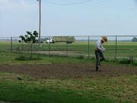 Steven planting milo
