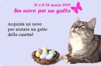 """28 MARZO """"UN UOVO PER UN GATTO"""" alla Casetta dei Gatti (Roma)"""