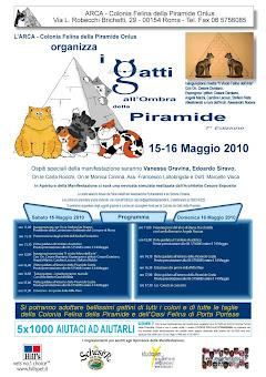 15-16 MAGGIO, ROMA: WEEK-END ASSIEME AI GATTI DELLA PIRAMIDE