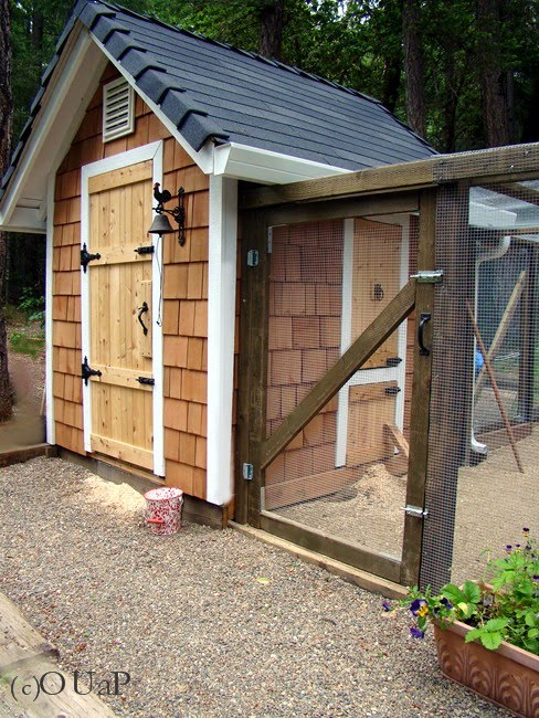 Ventilation For Chicken Houses : Once upon a plate hen house update