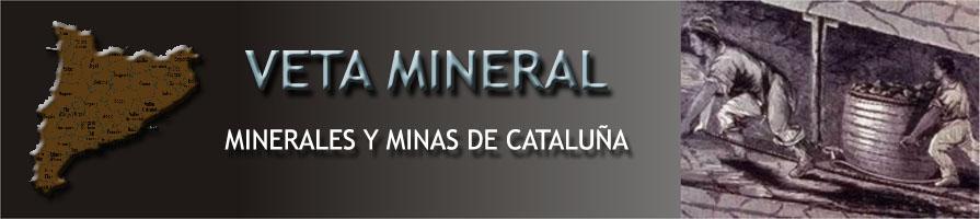Veta Mineral -Minerales y Minas de Cataluña-