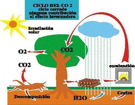 Canvi clim tic Elsbustibles f ssils i l 39 escalfament global