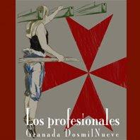 El blog de los Profesionales 2009
