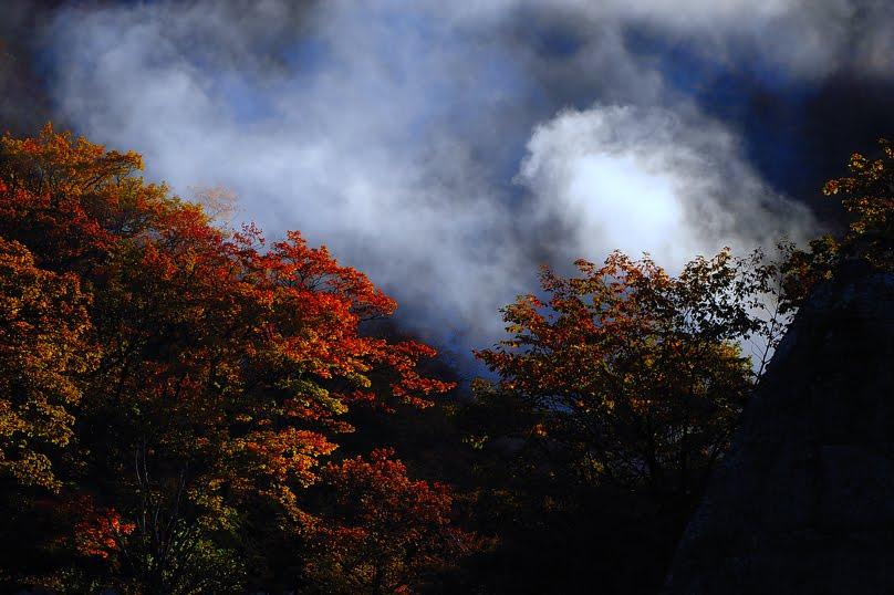 [秋田県黒湯温泉 DSC_0653.jpg]