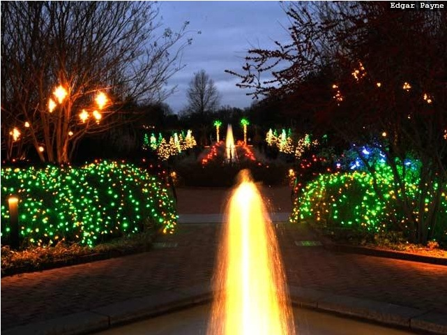 Even though it was really cold walking through the - Daniel stowe botanical garden christmas ...