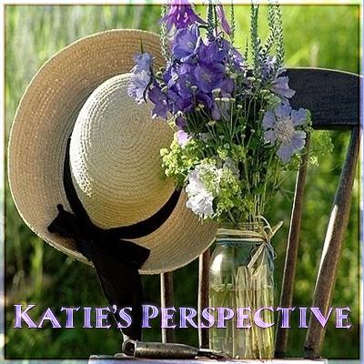 Katie's Perspective