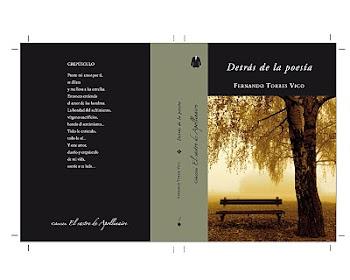 DETRÁS DE LA POESÍA 2010