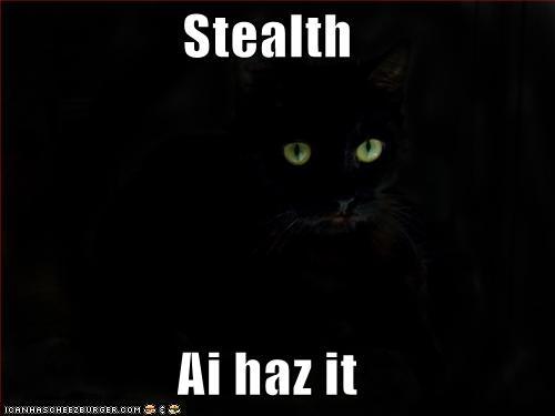 http://2.bp.blogspot.com/_0ppLhuA3OSo/TLhaOScS6xI/AAAAAAAABZM/_na_Al3LKRI/s1600/cat+stealth+I+haz+it.jpg