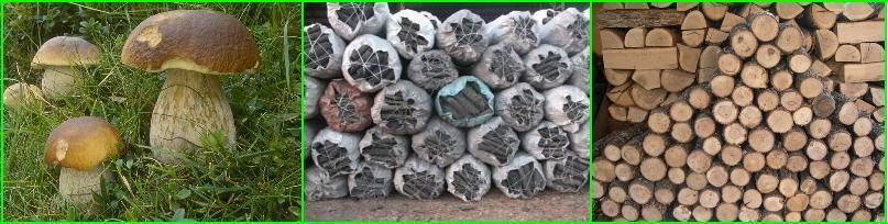 Odun Deposu - Odun Alınır - Satılır - Mangal Kömürü