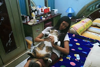 kucing tidur telentang, kucing ngantuk