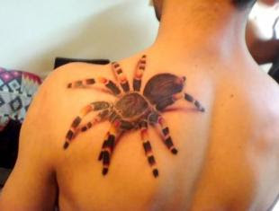 Shoulder Spider 3D Tattoo Design