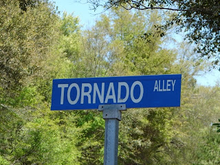 Tornado Alley, located on St. Helena Island, headed out to Hunting Island State Park in SC... who knew?