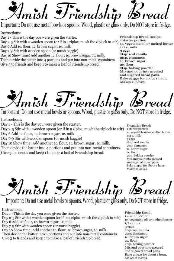 ... friendship bread sometimes referred to as amish friendship bread is a