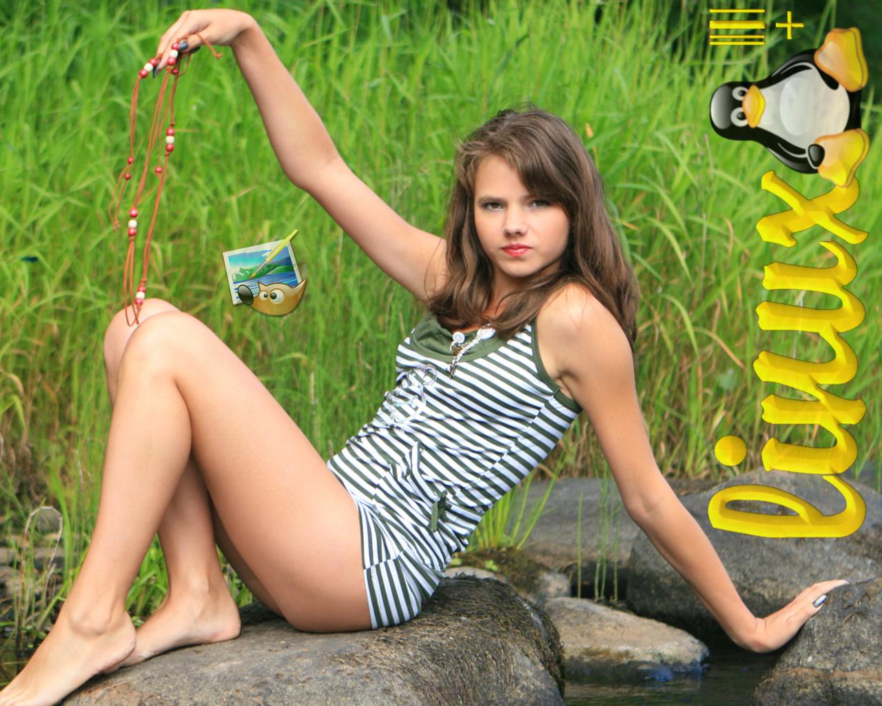 Sandra+Model+papel+de+parede-Gimp-Tux]