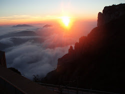 nuevo amanecer