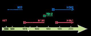 Diversos tipos de virus influenza en seres humanos. Los cuadros sólidos muestran la aparición de nuevas cepas, causantes de pandemias de influenza recurrentes. Las líneas punteadas indican la falta de certeza en la identificación de cepas