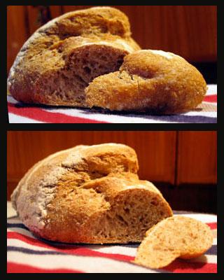 il pane senza impasto