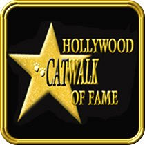 Hollywood Catwalk of Fame
