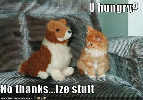 funny animal. I#39;m normally always hungry
