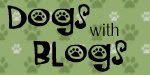 dogs with blogs