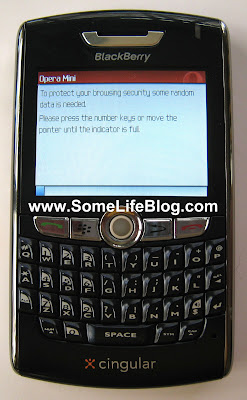 Blackberry Opera Mini Browser Installation Guide 11