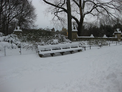 Undisturbed snow on a bench in the middle of Central Park. Families were flocking to the Park to sled and play in the snow.