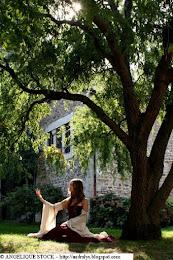 Robe Médiévale Fantastique : Orliénas