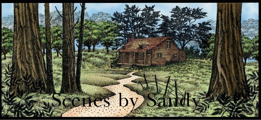 Scenes by Sandy