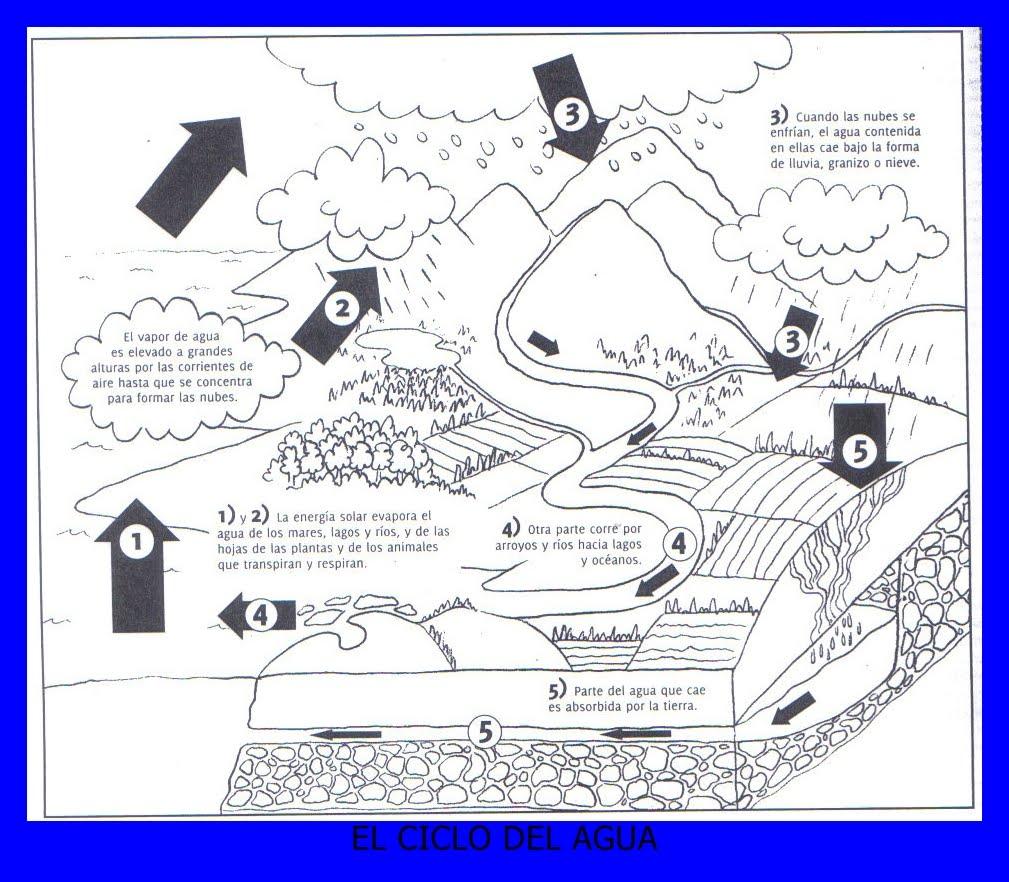 Séptimo Grado Escuela 5: ¿En qué consiste el ciclo del agua?
