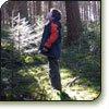 Laatste kind in het bos