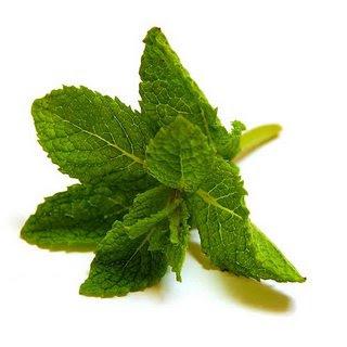 hortelã - Folha muito poderosa na medicina natural