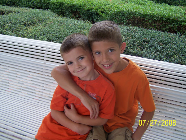 Coen (8) and Josh (5) - Summer 2008