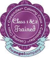 Caboodles Copics Class Certification