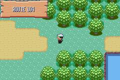 """"""" Route 104 """" Pokemon+Emerald66"""