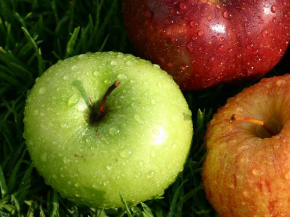 Apples Why they're a 10 best: This fruit is a good source of vitamin C and
