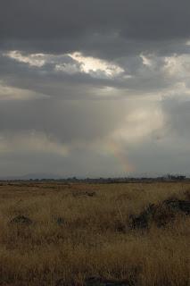 Hint of rainbow