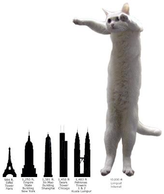 [Imagen: Longcat_buildings.jpg]