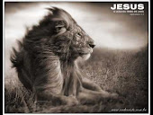 Jesus Cristo o leão da tribo de Judá!!!!