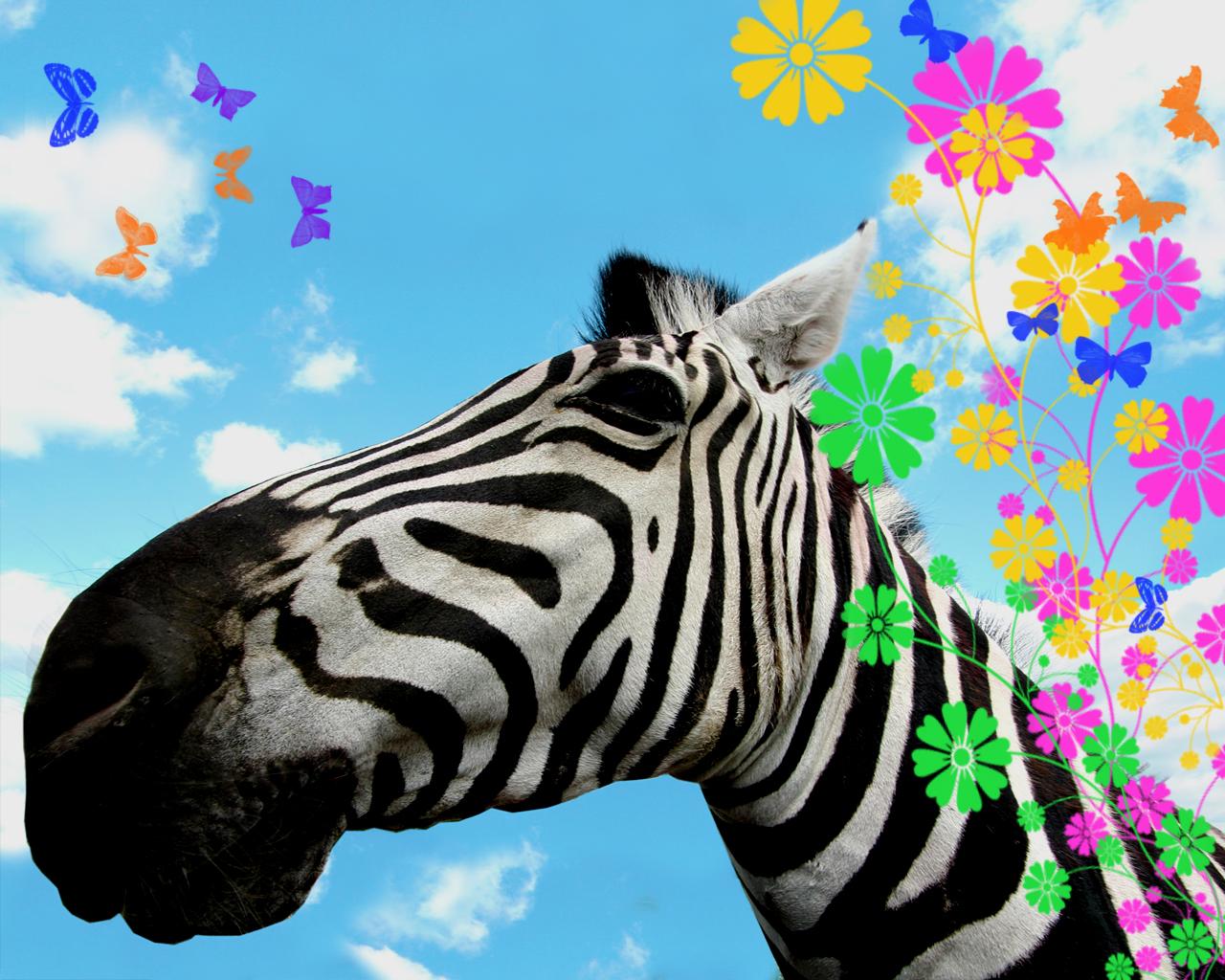 http://2.bp.blogspot.com/_14grgzfQGYA/TPCIy9Nq82I/AAAAAAAACK4/JcG5XfUDWTo/s1600/abstract-zebra-1280x1024-08.jpg
