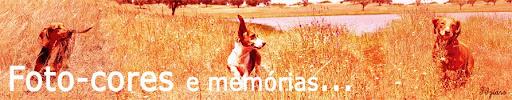 Foto-cores... (até 2008); Foto-cores e memórias... (de 1 de Novembro de 2010)